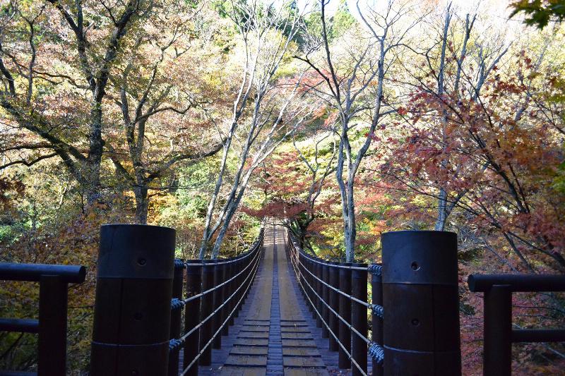 2012年11月16日 茨城県土岳山(花貫渓谷の紅葉とうっすら見えた富士山!) by tatuta