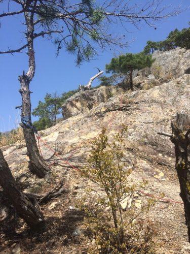 葛尾山 岩稜南端