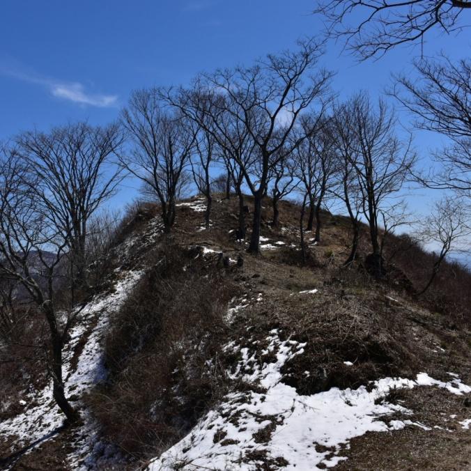 虚空蔵山 | 山の最新情報、登山情報 - ヤマレコ